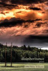 disinheritance image